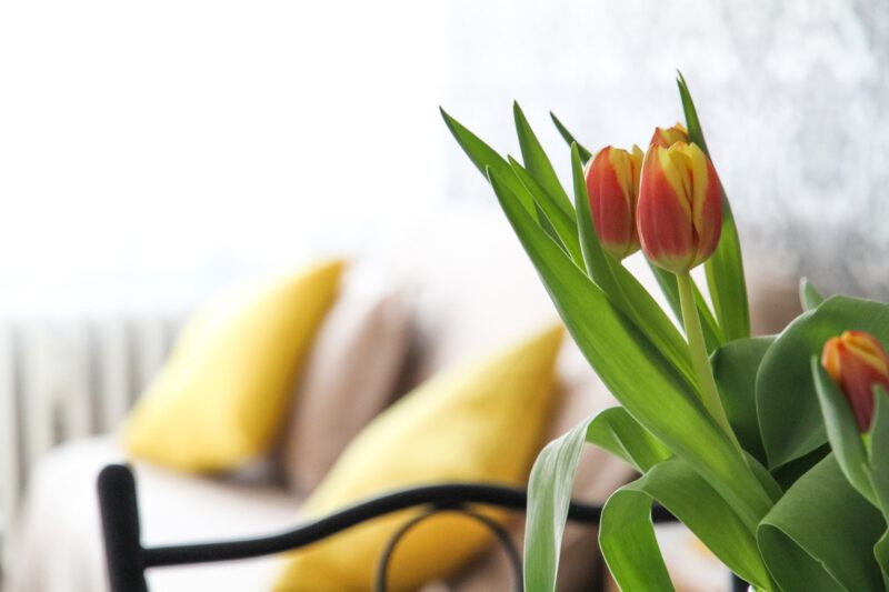Dom gotowy na nadejście wiosny – wiosenny wystrój domu